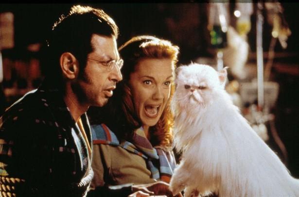 Elizabeth Perkins,Jeff Goldblum