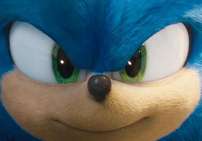 Sonic The Hedgehog 2020 The Fan Carpet